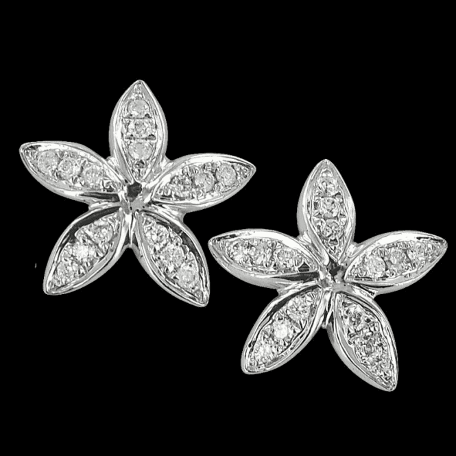 Edelweiss White Gold Diamond Earrings