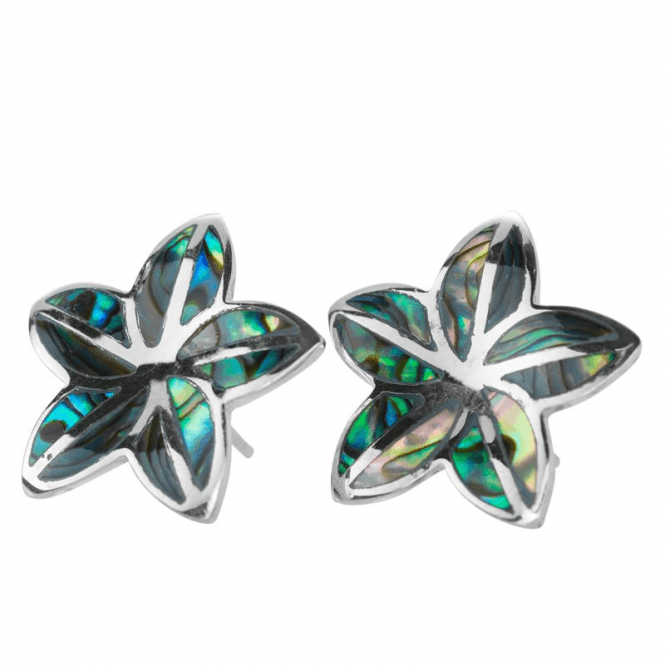 Silver Flower Set with Natural Paua
