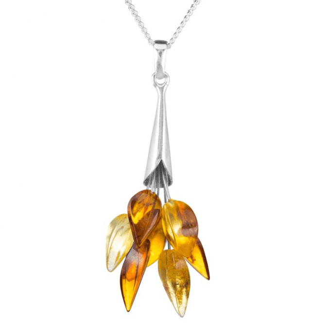 Fiery Flames of Polished Amber