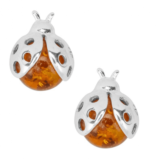Ladies Shipton and Co Silver Amber Ladybird Earrings TFE274AB