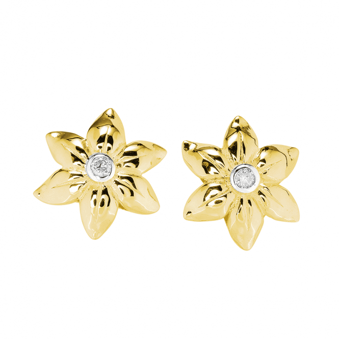 Exclusive Diamond Earrings Kissed by 18ct Gold