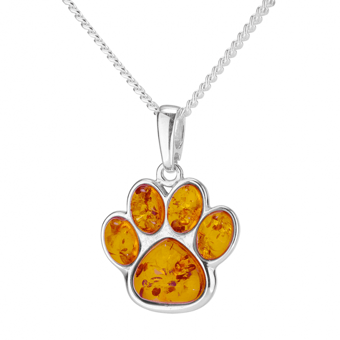A Pet Lover?s Pendant with ¾ct of Amber