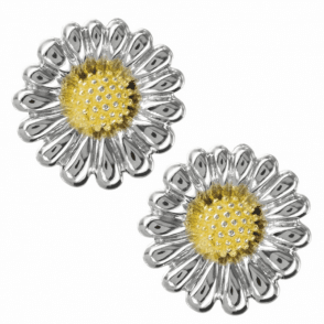 Ladies Shipton and Co Exclusive Silver Earrings EQP164NS
