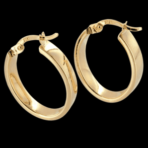 Ladies Shipton and Co Exclusive 9ct Yellow Gold Earrings TAR431NS