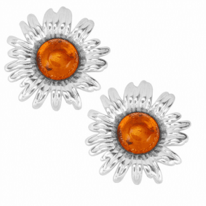 Ladies Shipton and Co Silver and Amber  TFE276AB