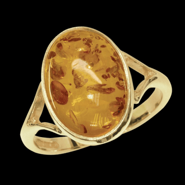 Ladies Shipton and Co Exclusive 9ct Yellow Gold and Amber Ring RY0878AB