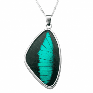 Ladies Shipton and Co Silver and Butterfly Wing Pendant including a 16 Silver Chain TFE048BY
