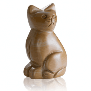 Ginger Tom in China Picture Jasper
