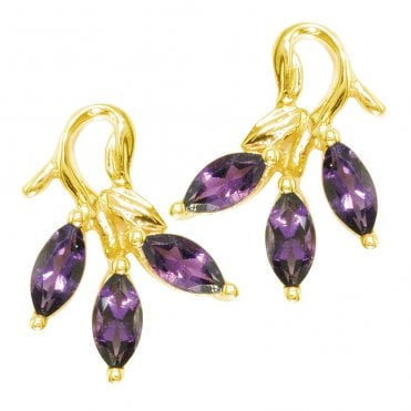 Ladies Shipton and Co Exclusive 9ct Yellow Gold and Amethyst Earrings EYG005AM
